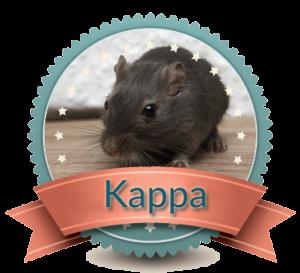 kappaclear